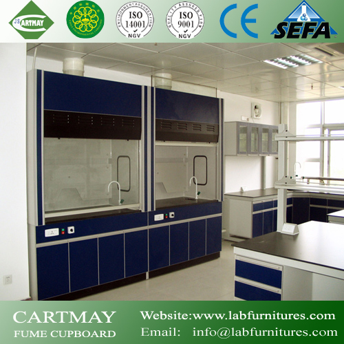 Fume Hood with Acid Storage Cabinet